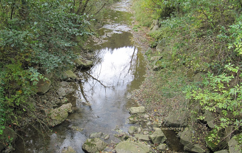 Fluss Triesting bei Kaumberg