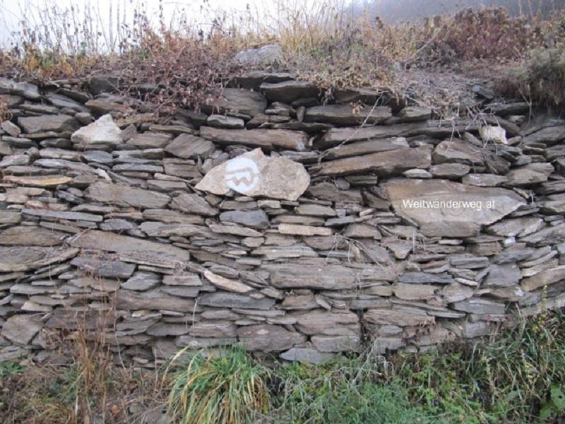 Weinberg mit Steinmauer, Welterbesteig Wachau, Niederösterreich