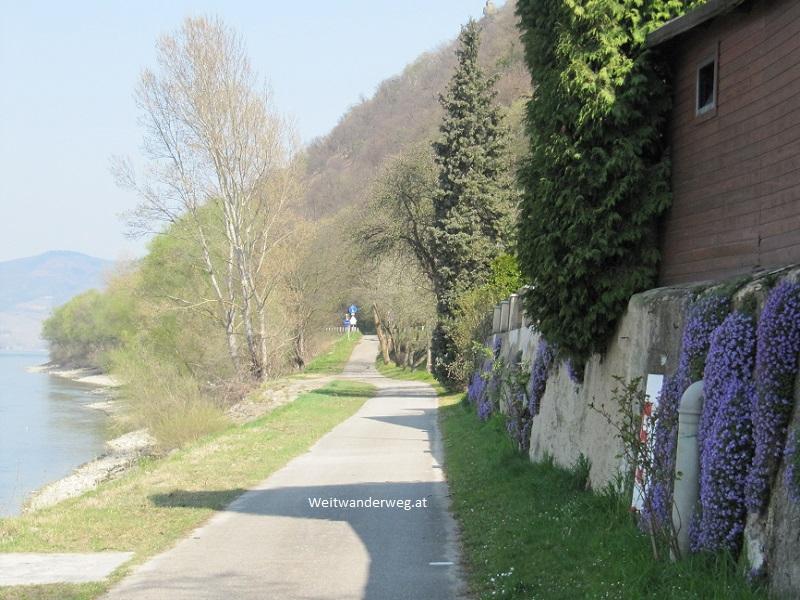 Welterbesteig Wachau, Donau bei Hofarnsdorf, Niederösterreich