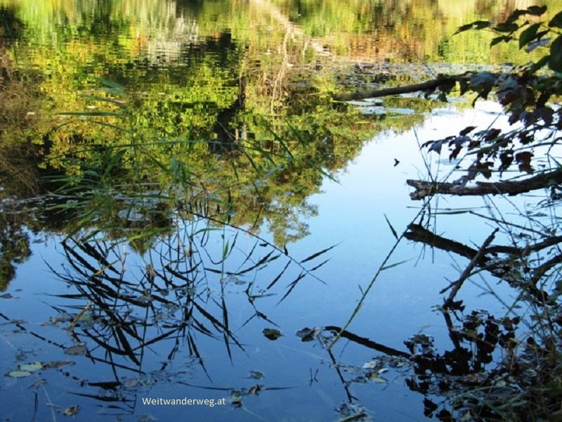 Gewässer Großenzersdorfer Arm, Nationalpark Donauauen