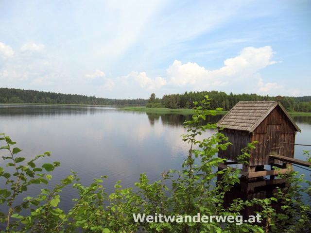 Teich im Waldviertel Nähe Heidenreichstein