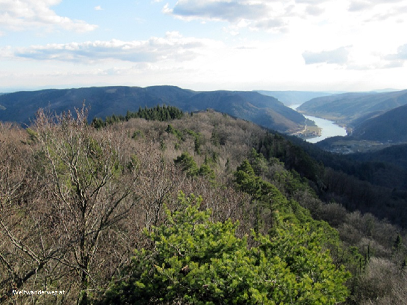 Blick von der Gruberwarte in der Wachau über das Donautal zu den Alpen