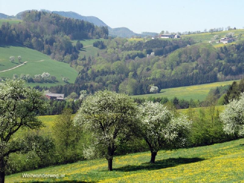 Alpenvorland im Mostviertel