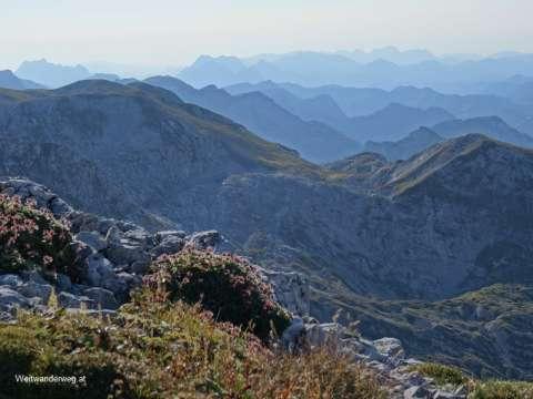 Ausblick in die Alpen