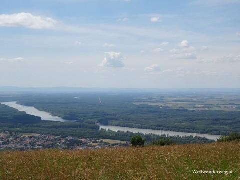 Ausblick vom Hundsheimer Berg über den Nationalpark Donau-Auen