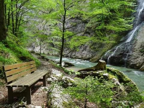 Erlaufschlucht, Naturpark Ötscher-Tormäuer, Bezirk Scheibbs, Mostviertel, Niederösterreich