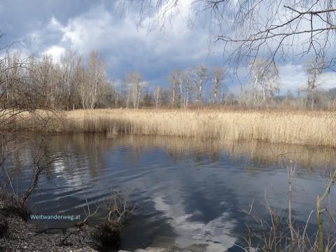 Geschützte Natur im Nationalpark Donau-Auen