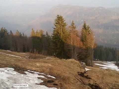Der Unterberg in den Gutensteiner Alpen