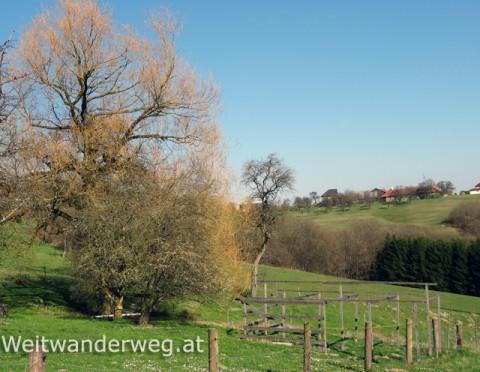 Strudengau Landschaft Impression