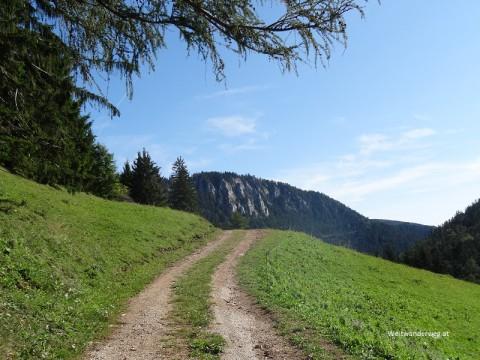 Öhler, Dürre Wand, Niederösterreich