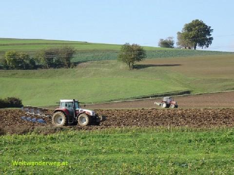 Bauern mit Traktoren und Maschinen im Nibelungengau, Niederösterreich