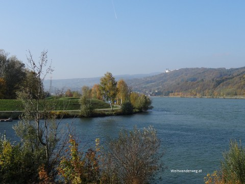 Erlaufmündung, Fluss Erlauf, Donau