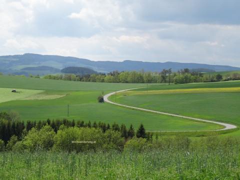 Weg in der Buckligen Welt, Wiener Alpenbogen