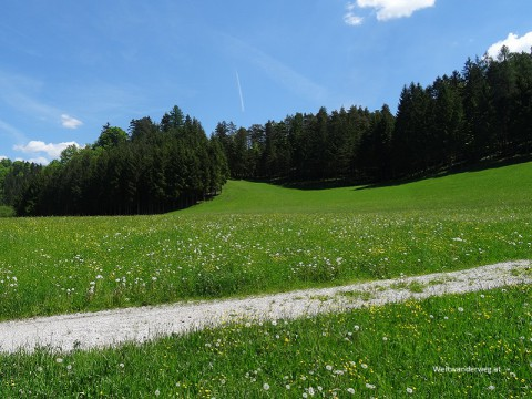 Die Türnitzer Alpen bei Türnitz im Mostviertel, Niederösterreich