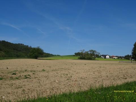 Landschaft bei Krumbach in der Buckligen Welt