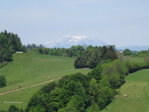 Die Bucklige Welt bei Hochneukirchen-Gschaid in Niederösterreich