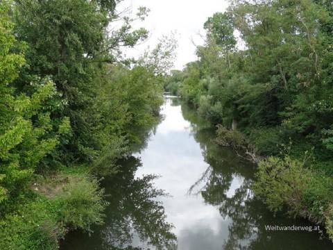 Fluß Leitha bei Bruck an der Leitha in Niederösterreich