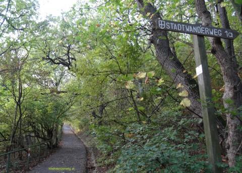 Leopoldsberg mit Nasenweg