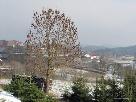 Elsenreith im südlichen Waldviertel