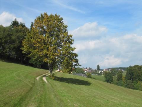 Liebenau im Mühlviertel, Bezirk Freistadt