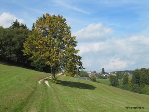 Liebenau im Mühlviertel, Bezirk Freistadt, Oberösterreich