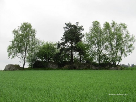 Landschaft bei Haugschlag im Waldviertel