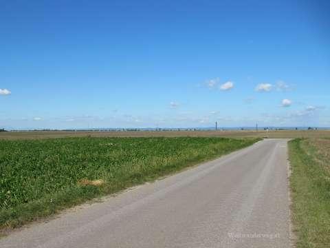 Flache Landschaft bei Frauenkirchen im Burgenland