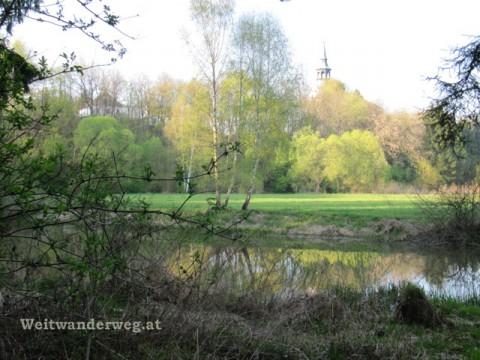Thaya Uferlandschaft bei Dobersberg