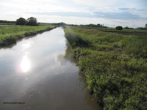 Fluß Leitha bei Nickelsdorf im Burgenland