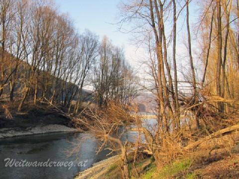 Seitenarm der Donau zwischen Melk und Aggsbach Dorf