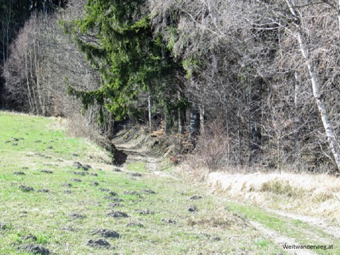 Auf dem Jauerling in der Wachau bei Maria Laach