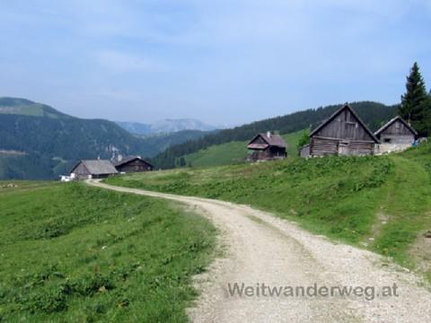 Die Turnauer Alm bei der Veitschalpe in der Steiermark