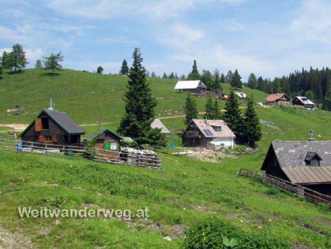 Die Göriacher Alm, Steiermark