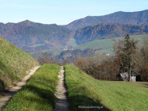 Mostviertler Landschaft zwischen Amstettner Hütte und Seeburg