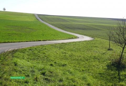 Wanderweg bei Ybbs