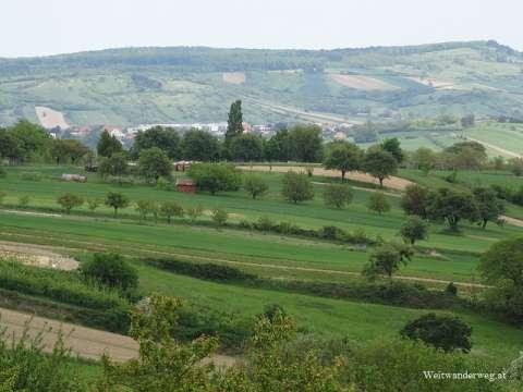 Landschaft bei Wiesen, Bezirk Mattersburg, Burgenland